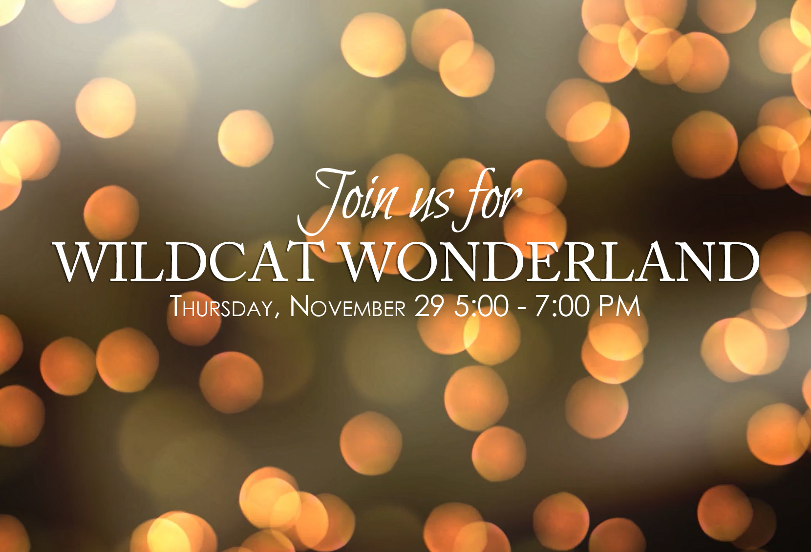 Wildcat Wonderland - November 29